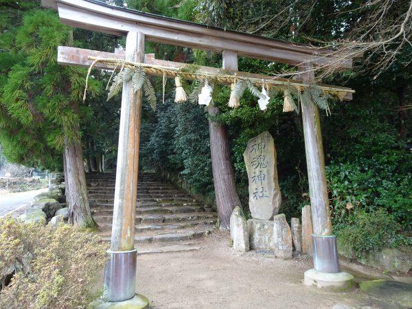 島根・神魂(かもす)神社のパワースポットまとめ。洞窟・八雲の図の謎も!